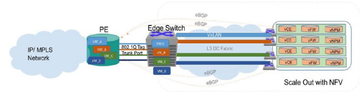 Virtualized Network Simplification